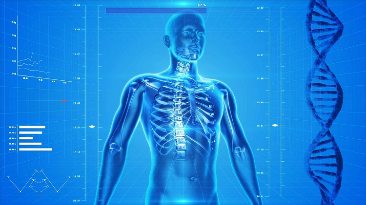¿Estás buscando la mejor radiología dental 3D en Valencia?